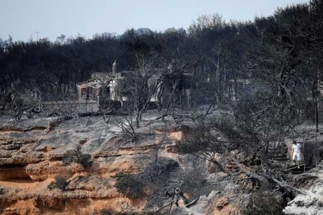 WWF Hellas: 10 months after the Mati fire nothing has changed in forest protection