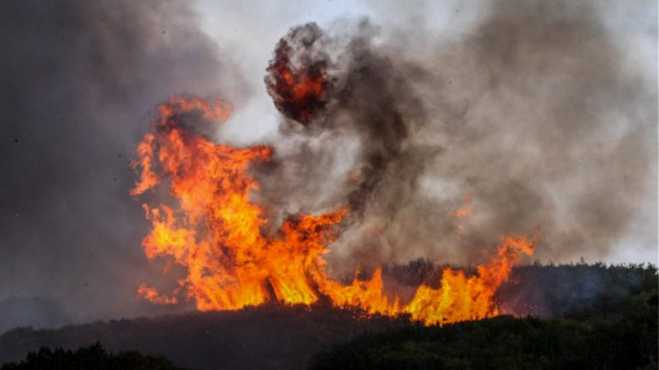 Forest fire out of control in Fthiotida, village evacuated