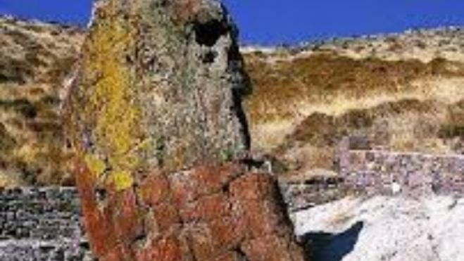Giant petrified tree trunk found on Lemnos