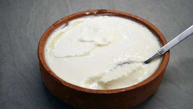 Amendment to ban Czech dairy industry from calling yoghurts 'Greek'